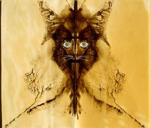 El gato hombre Remedios Varo