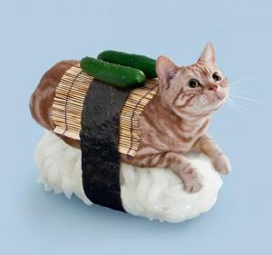 Gato sushi