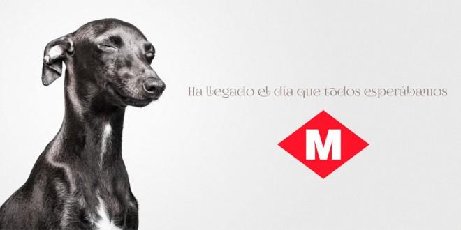 perros en metro barcelona