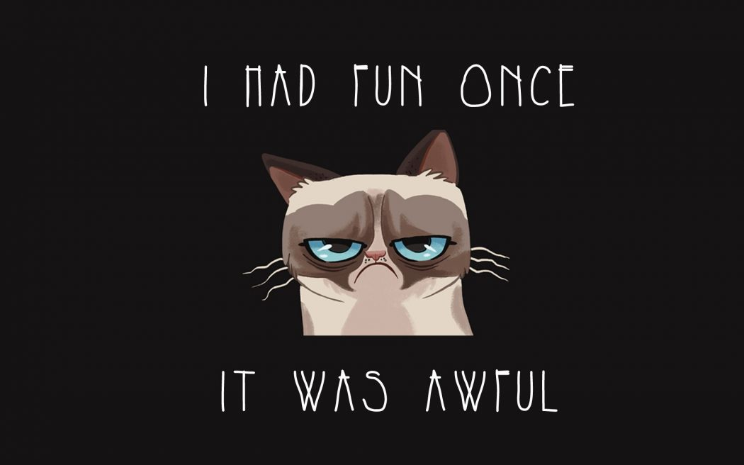 meme grumpy cat