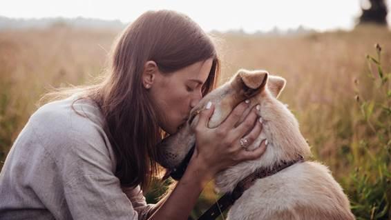amar-a-un-animal-mas-que-a-un-hijo